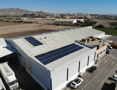ISE starts the installation of 100 kW of self-consumption for Frutas Hermanos López Sánchez